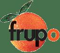 Računalništvo FRUPO